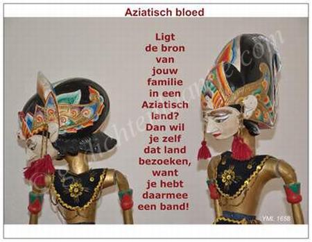 Gedichtkaart  YML 1658: Aziatisch bloed
