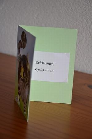 Dubbele kaart Y/D 0001: Gefeliciteerd! Geniet er van!