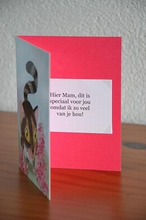 Dubbele kaart Y/D 0021: Hier Mam, dit is speciaal voor jou!