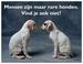 Gedichtkaart YML 835: Mensen zijn maar rare honden